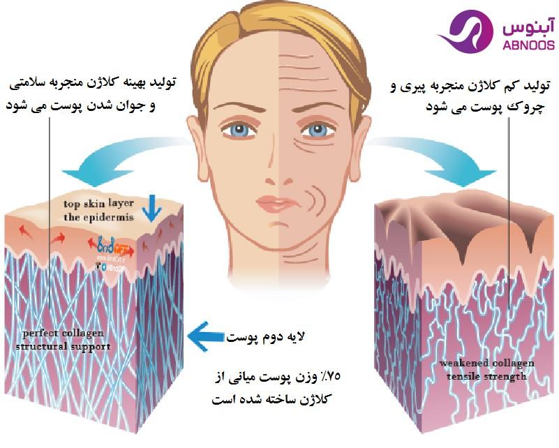 کلاژن و پوست زیباییکلینیک پوست و مو آبنوس
